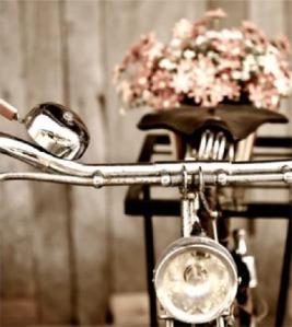 startseite_bike